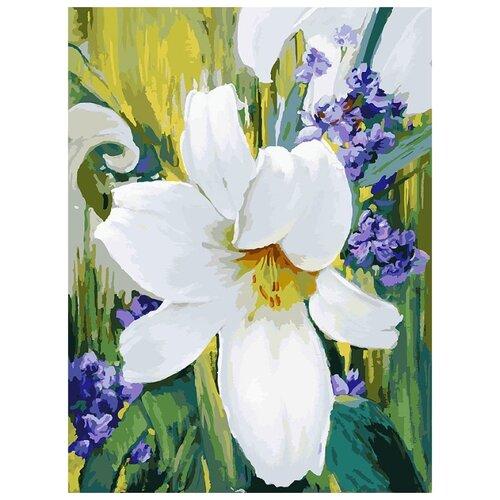 Купить Белоснежка Картина по номерам Лилия 30х40 см (783-AS), Картины по номерам и контурам