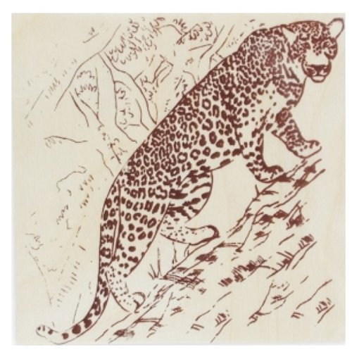 Рыжий кот Набор для выжигания Леопард рыжий кот набор для выжигания любимые виды