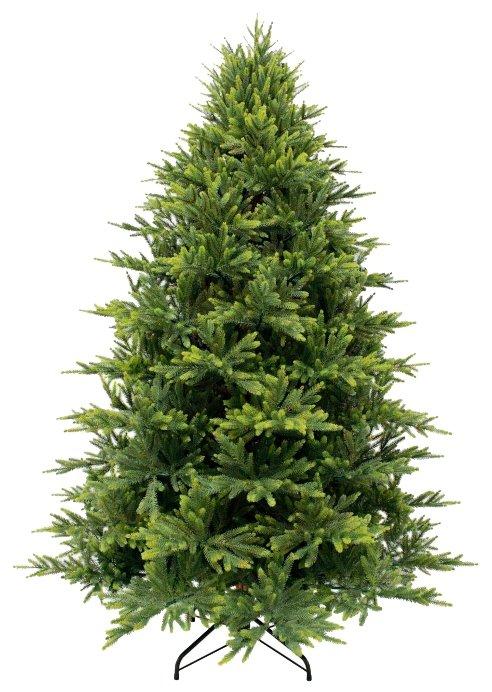 Triumph Tree Ель Королевская Премиум FULL PE