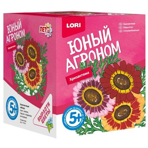 Купить Набор для выращивания LORI Юный агроном. Хризантема Р-018, Наборы для исследований
