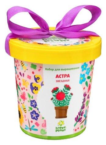 Набор для выращивания Happy Plant Горшок подарочный Астра звездная