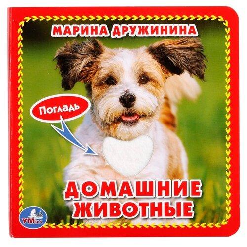 Дружинина М. Книжка-картонка с тактилом. Домашние животныеКниги для малышей<br>