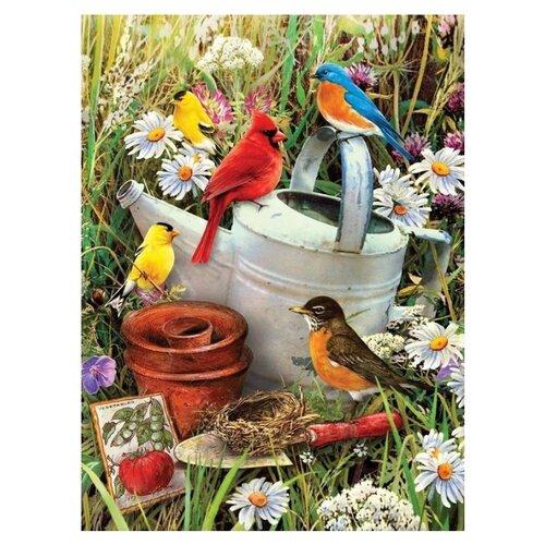 Купить Royal & Langnickel Картина по номерам Птицы в саду 22x29 см (PJS71), Картины по номерам и контурам