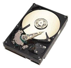 Жесткий диск Seagate ST3250823A