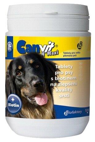 Canvit CanVit Biotin maxi