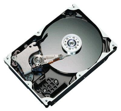Жесткий диск Maxtor STM3250310AS