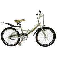 "Детский велосипед Jaguar MS-A202 Alu 20"""