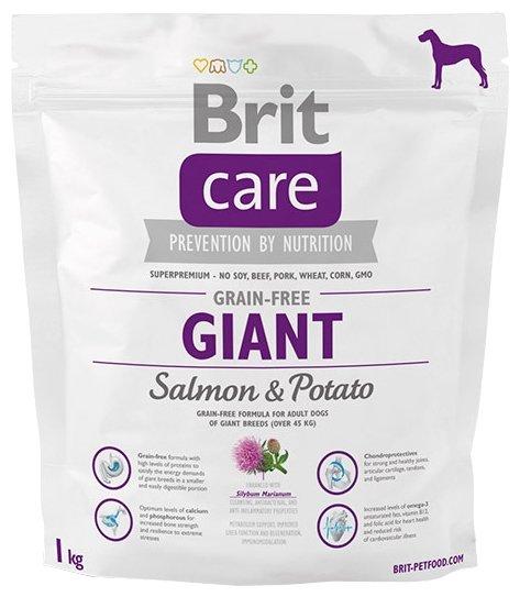 Корм для собак Brit Care для здоровья кожи и шерсти, лосось с картофелем 1 кг (для крупных пород)