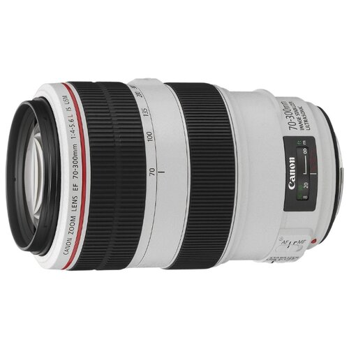 Фото - Объектив Canon EF 70-300mm f/4-5.6L IS USM черный/белый объектив canon ef 400mm f 4 do is ii usm