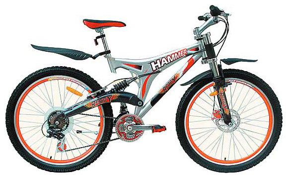 Горный (MTB) велосипед REGGY RG26B25250