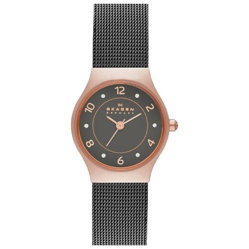 Наручные часы SKAGEN SKW2270 цена 2017
