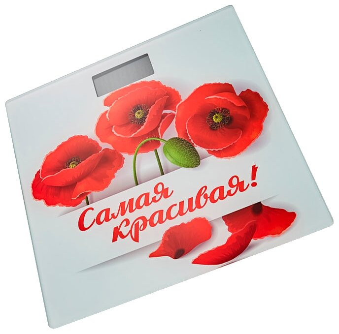 Весы Василиса ВА-4005