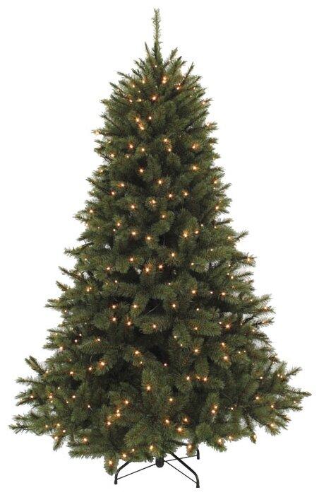 Triumph Tree Ель Лесная Красавица (лампы)