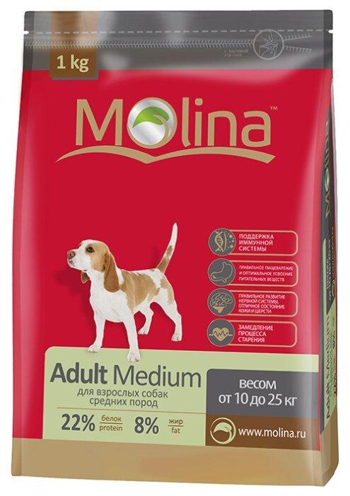 Корм для собак Molina Adult Medium (1 кг)