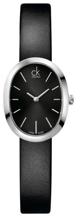 Наручные часы CALVIN KLEIN K3P231.C1