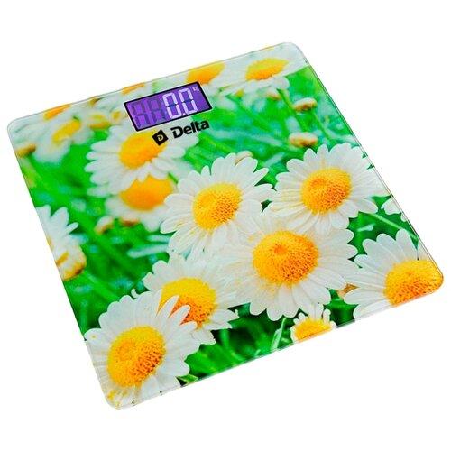 Весы электронные DELTA D-9220