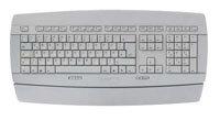 Analysis-Plus Purple Plus USB 2 m