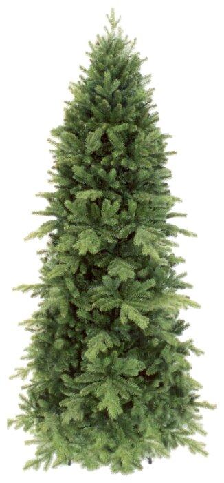 Triumph Tree Сосна Изумрудная--