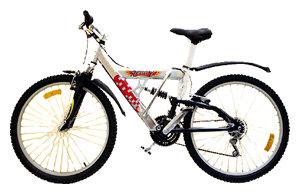 Горный (MTB) велосипед REGGY RG26B4000
