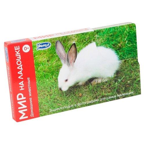 Набор карточек Умница Мир на ладошке. Домашние животные 18x10 см 24 шт.Дидактические карточки<br>