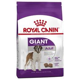 Корма  - Сухой корм Royal Canin Giant 4 кг, 0