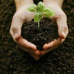 Субстраты, грунты, мульча - Плодородная земля в мешках. Плодородный грунт в мешках. Низовой торф в мешках., 0
