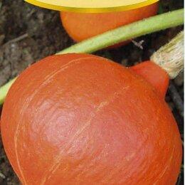 Семена - Семена. Японская Тыква. Высокая урожайность, 0