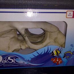 Гроты для аквариумов и террариумов - Грот Декси Череп Динозавра , 0