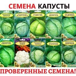Семена - Семена. Капуста ультраскороспелая, среднеспелая и поздняя. Интернет-магазин, 0