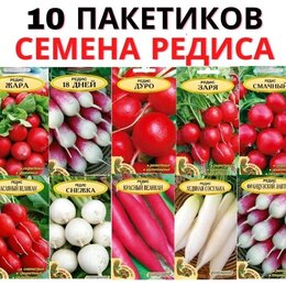 Семена - Семена. Редис. Покупайте только проверенные семена!, 0