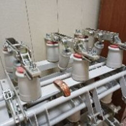 Товары для электромонтажа - Разъединитель РВЗ 10-630 мф 250мм, 0