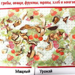 Сушилки для овощей, фруктов, грибов - Сушилка для овощей и фруктов Мощный Урожай, 33х55 см., 0