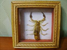 """Картины, постеры, гобелены, панно - Модульная картина """"Скорпион""""., 0"""