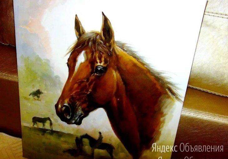 Резервация(Лошадь), 50х60см, Картина маслом на холсте, художник по цене 11990₽ - Картины, постеры, гобелены, панно, фото 0