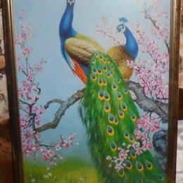 Картины, постеры, гобелены, панно - Картина., 0