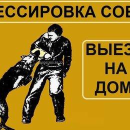 Охрана и безопасность - ДРЕССИРОВКА СОБАК - ВЫЕЗД НА ДОМ, 0
