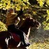 Конные прогулки в Сочи по цене 2500₽ - Экскурсии и туристические услуги, фото 12