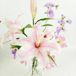 Цветы, букеты, композиции - Цветы сезонные садовые, 0