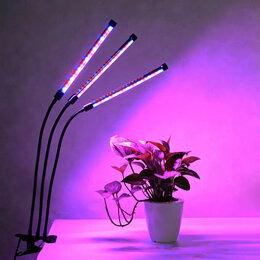 Лампочки - Фитолампа, 0