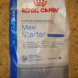 Корма  - Maxi Starter 18 кг royal canin , 0