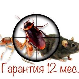 Дезинфицирующие средства - Уничтожение тараканов клопов блох муравьёв и других насекомых. Дезинфекция. , 0