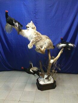 """Рога, шкуры, чучела животных - Композиция из чучел-""""Охота рыси на тетеревов""""., 0"""