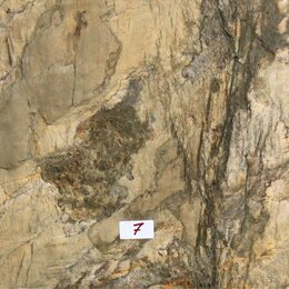 "Фактурные декоративные покрытия - Шпон камня ""Burning Forest"" 1.2x0.61 м., 0"