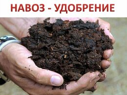 Удобрения - Навоз ( коровий и конский ) , 0
