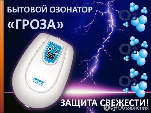 """Озонатор бытовой """"Гроза"""" по цене 7324₽ - Дезинфицирующие средства, фото 0"""
