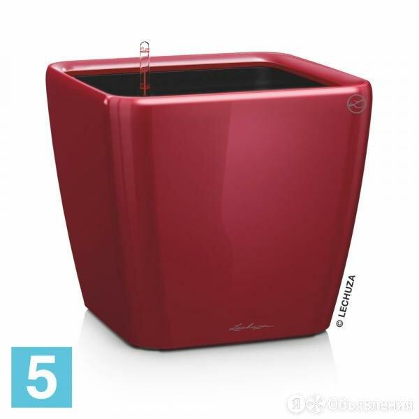 Lechuza Quadro кашпо, красное 50-l, 50-w, 47-h по цене 13790₽ - Горшки, подставки для цветов, фото 0
