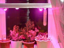 Аксессуары и средства для ухода за растениями - Светильник LED на кронштейнах для  вегетации…, 0