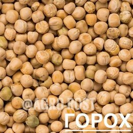 Семена - Горох семена, 0