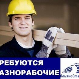 Разнорабочие - Разнорабочий- Подсобно рабочий, 0