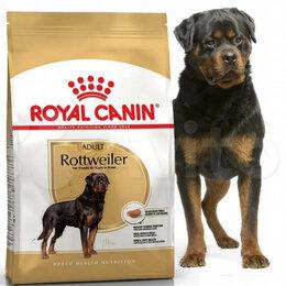 Корма  - Rottweiler Royal canin 17 кг, 0